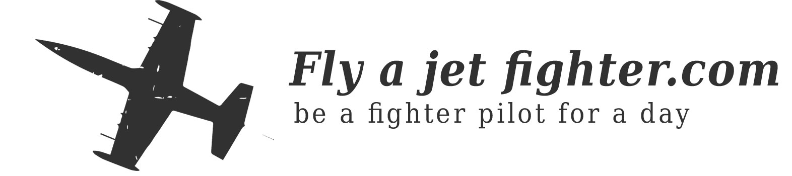 flyajetfighter logo